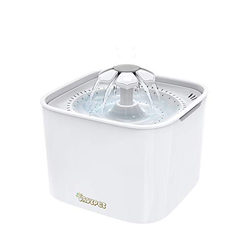 Electric Water Feeder - DADYPET Cat Water Fountain, 2L Pet Water Fountain Dispenser, Super Quite Flower Drinking Fountain, Automatic Electric Water Feeder for Dogs, Cats, Birds, Guinea Pigs and Small Animals, White