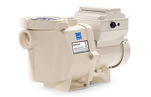 Pentair 011028 IntelliFlo VS Pool Pump, Almond