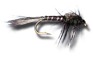 Black Mayfly Nymph Fly Fishing Fly - Size 10 - 6 Pack Mayfly Nymphs