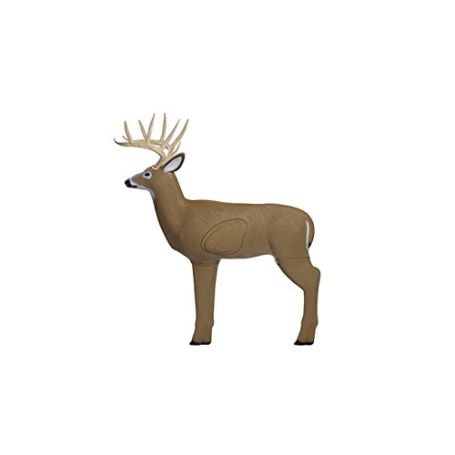 Shooter Buck 3D Archery Target with Replaceable Core