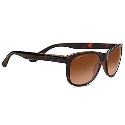 Image of SERENGETI Anteo Sunglasses Shiny Dark Tortoise Medium Large Unisex
