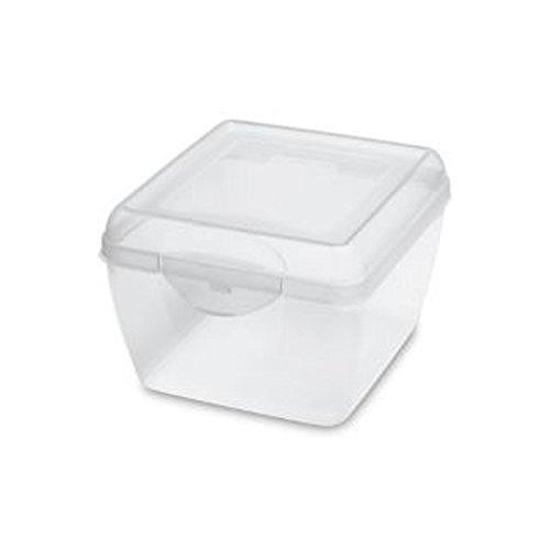 Sterilite Flip Top Box 7-1/4l X 6-1/2w X 4-3/8h (Boxes File Hinged)