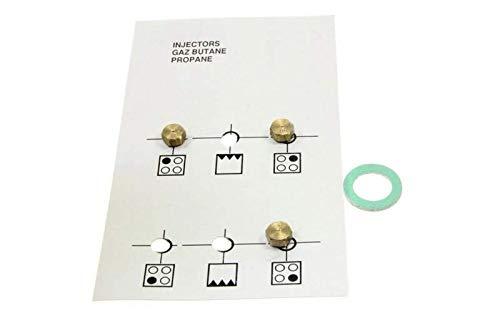 Bolsita inyectores Gas butano referencia: 4431900083 para ...