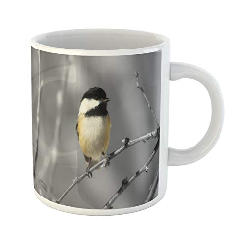 Semtomn Funny Coffee Mug Bird in This We See Chickadee Black and Maine Song 11 Oz Ceramic Coffee Mugs Tea Cup Best Gift Or Souvenir -