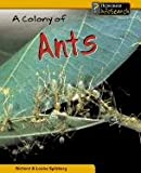 A Colony of Ants, Louise Spilsbury and Richard Spilsbury, 140340741X