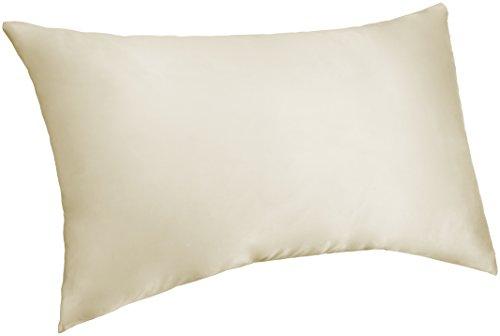 Pinzon Mulberry Silk Pillowcase - Standard, Ivory