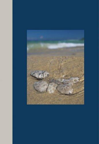 Read Online Michigan Journals--Petoskey Stones pdf