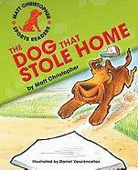 book cover of The Dog That Stole Home
