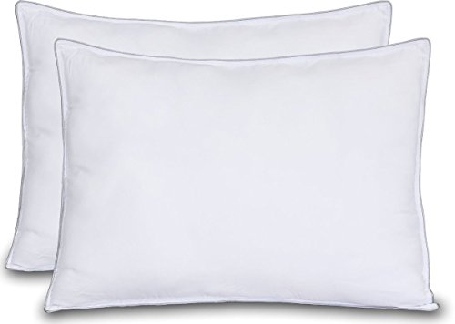 extra-lush-fiber-polyester-filled-pillows-standard-queen-size-100-polyester-2-pack-7d-hollow-silicon