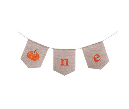 One Banner Pumpkin Banner 1st Birthday Burlap Party Banner Garland Thanksgiving Day Party Decorations
