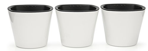 Self Watering Mini 3.5'' Planter Pots (3 Pack IVORY) Grow a Indoor Window Sill Garden. Perfect for Potting Smaller House Plants, Herbs, African Violets, Succulents, Flowers or Start Seedlings. by Window Garden