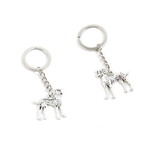 1 PCS Dalmatian Keychain Keyring Jewelry Making Charms Door Car Key Tag Chain Ring Z1WW5Y - Dalmatian Keychain