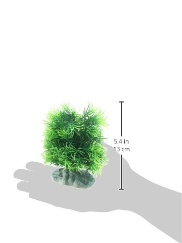Amazon.com : eDealMax Forma Torre plantas acuáticas Fish Tank/Grass, DE 6 pulgadas, Verdes : Pet Supplies