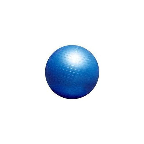 - Hugger Mugger Blue 55cm Exercise Ball (Blue)