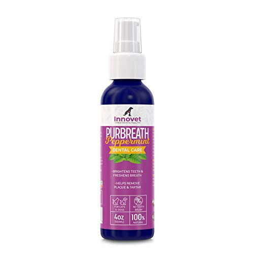 INNOVETPET-PurBreath-Oral-Care-Gel-for-Dog-Cats–120-ML-No-Toothbrush-Dental-Care-for-Bad-Pet-Breath-Fights-Tartar-Plaque-Gum-Disease100-Natural-Ingredients-Made-in-USA