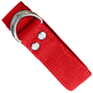 Champion Sports Red Football (Champion Sports Football Belt)
