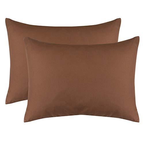 ALCSHOME Queen Pillowcases, 2 Pack Ultra Soft Microfiber Premium Quality, 20