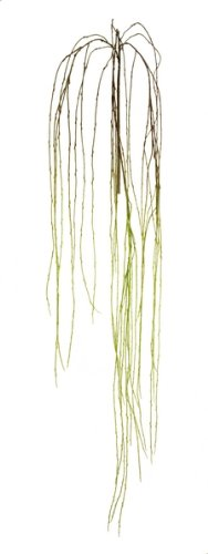 Weeping Willow Branch - Renaissance 2000 Decorative Weeping Willow Spray, 69-Inch