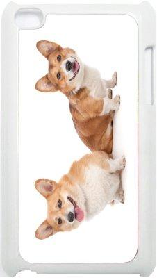 Rikki Knight Pembroke Welsh Corgi Dog Design iPod Touch White 4th Generation Hard Shell Case (4th Case Ipod Corgi Generation)