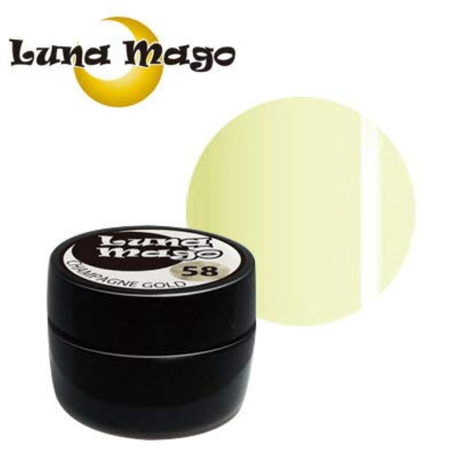 任命責任者簡略化するLuna Mago カラージェル 5g 004 クリーム