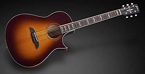 Framus Legacy FC 44 SMV - Guitarra acústica: Amazon.es ...