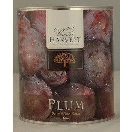 Plum (Vintner's Harvest Fruit Bases) 96 ()