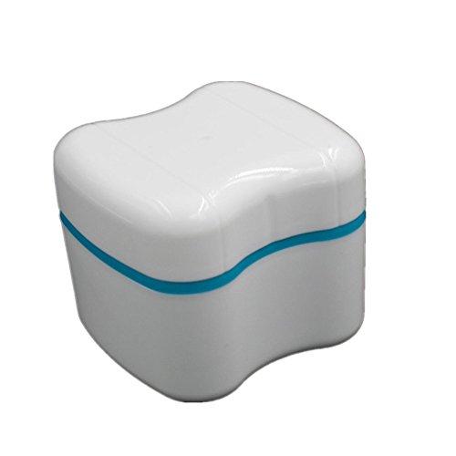 denture polish - 9