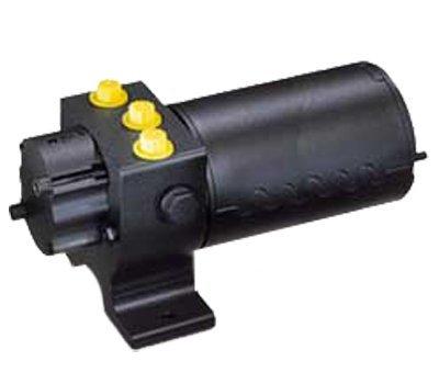 Raymarine Type 3 24v Pumpset For Autopilots M81124