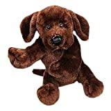 Webkinz Chocolate Lab with Trading Cards