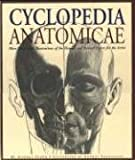 img - for Cyclopedia Anatomicae book / textbook / text book