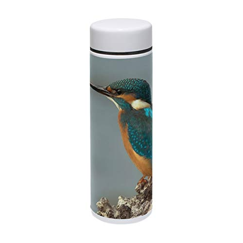 Water Bottle Birds Kingfisher Travel Mug Vacuum Insulated Stainless Steel Thermos Leak Proof Coffee Mugs 7 oz/220ml