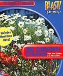Cd Jewel Case Design - Burpee 3D Garden Designer 3.0 (Jewel Case)