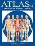 Atlas of Human Anatomy 1st Edition