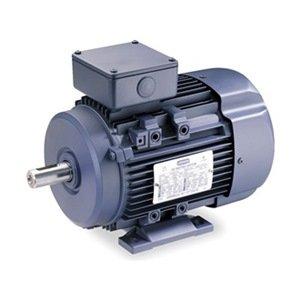 Premium Efficiency Metric Motor Df112m
