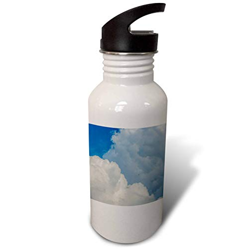 3dRose Alexis Photography - Nature Clouds - White cumulus clouds, blue sky, a swallow bird in the air. Freedom - Flip Straw 21oz Water Bottle (wb_287388_2) by 3dRose