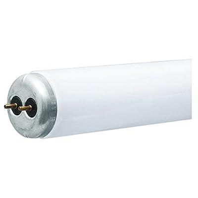 G E LIGHTING 68958 Westpointe T12 Fluorescent Tube, 40W, Cool White