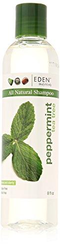 Eden BodyWorks Peppermint Tea Tree Clear Shampoo, 8 Ounce