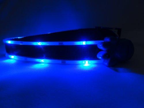 Ultra Light Me Up Dog Collar (Small, Blue LED), My Pet Supplies