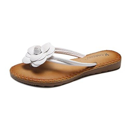 GIY Women's Bohemian Flower Flip Flops Flat Sandals Fashion Comfort Summer Beach Thong Slipper Black White by GIY