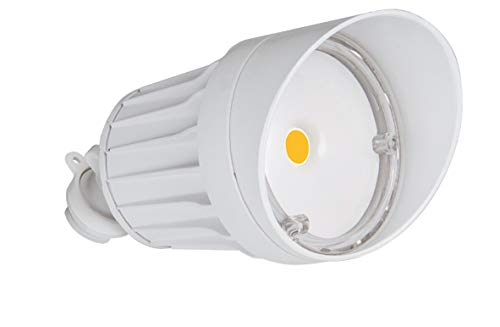 - ASD LED Outdoor Flood Security Light Spare Head, 10W, White, 5000K