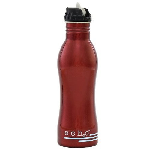 - EcoUsable Ech2o 25 oz Stainless Steel Filtered Bottle - Metallic Red