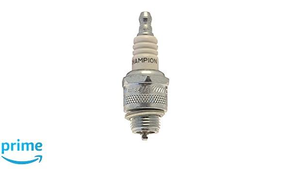 Champion OE037/T10 OE184/R04 Bujías de Encendido Iridium 9004 RC10WMPB2: Amazon.es: Coche y moto