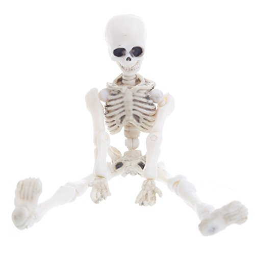 Hacloser Movable Mr. Bones Skeleton Human Model Skull Full Body Mini Figure Toy