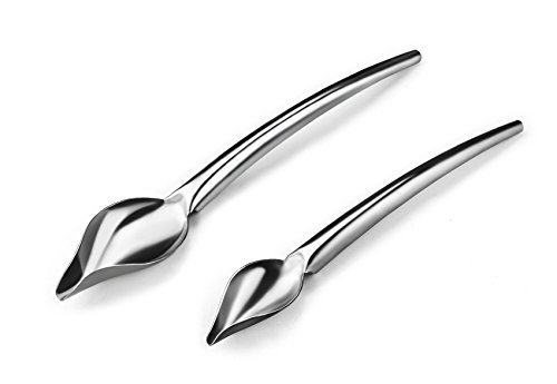 Dcrt Deco Spoon Multi-use Precision Chef Culinary Drawing Spoons for Decorating Plates, set of 2