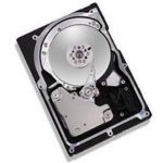 Maxtor 8J073J002075E 73GB 3.5IN 10K RPM ULTRA320 SCSI LVD/SE