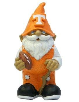 Tennessee Mini 8