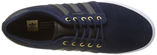 Adidas Herren Seeley Skateboardschuhe Blau (collegiate Navy / Core Black / Footwear White)