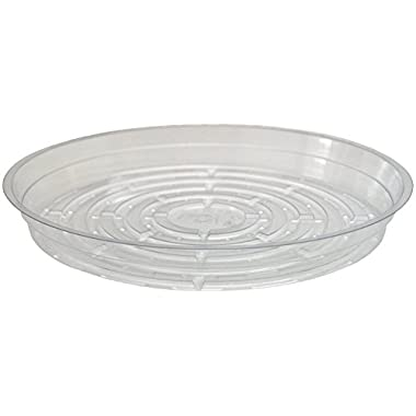 Plant Saucers - 10 Pack of 10  - Excellent For Flowers And Household Plants
