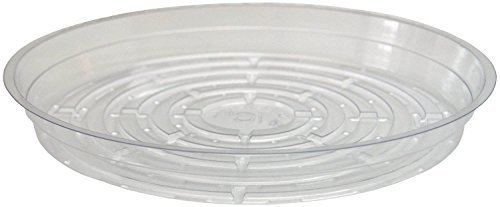 clear-plant-saucers-5-pack-of-10-excellent-for-indoor-outdoor-plants
