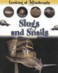 slugs-and-snails-looking-at-minibeasts